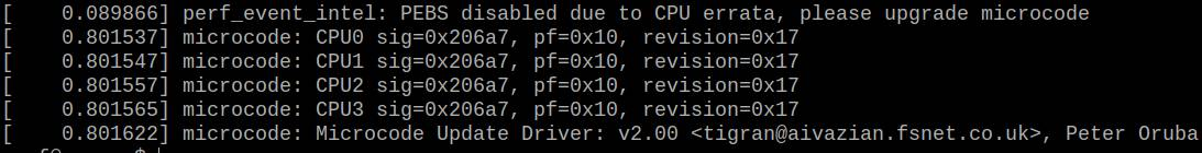 CPU microcode error in Linux