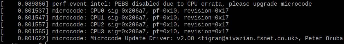 CPU microcode error in Linux